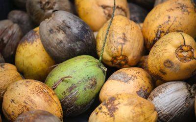 Coconut Oil…
